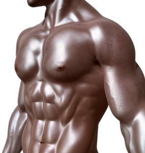 bodybuilder-331670_960_720